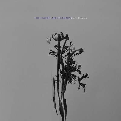 TNAF-InRolling Waves